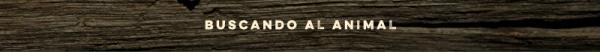 titulo_buscando_el_animal_2